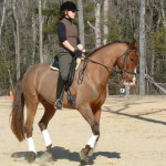 L Hidden hollow dressage lesson